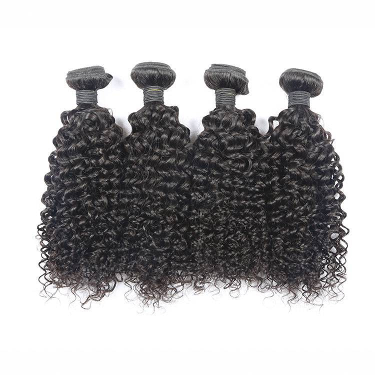 Raw Curly Human Hair Bundles One Donor Hair